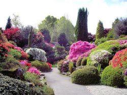 Сад  камней в Леонардсли (Rock  Garden Leonardslee)