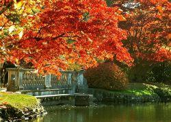 Шеффилд парк осенью